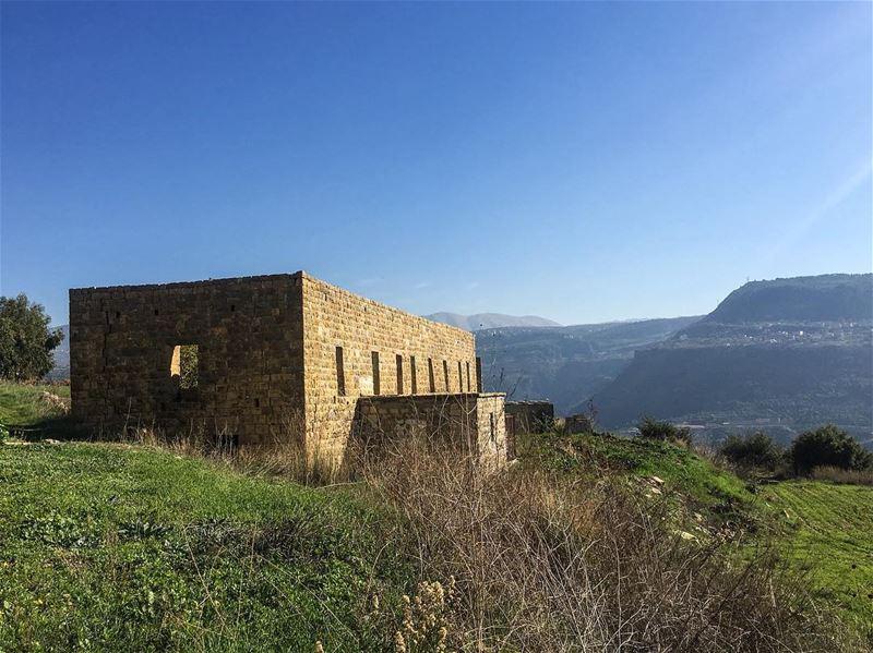 Can you hear their voices?______________________________________ Nature... (`Ain Trez, Mont-Liban, Lebanon)