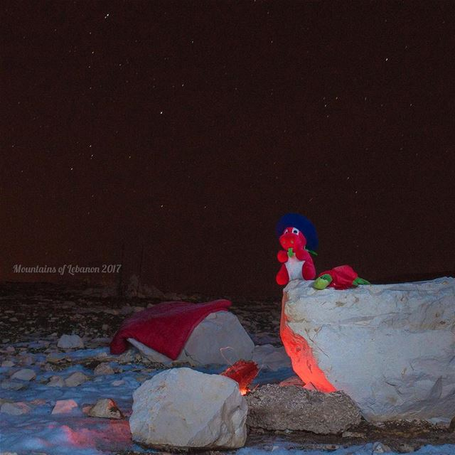 Ness & Griff keeping Warm near a fire enjoying the Geminid Meteor Shower,... (Wardeh Kfardebian)
