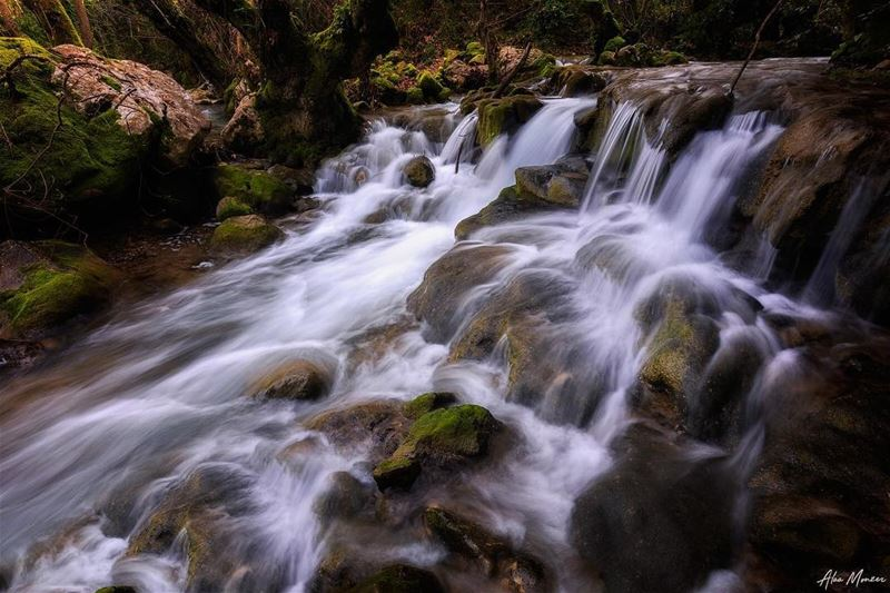 Endless stream... water river runningwater lebanon beirut nature ...