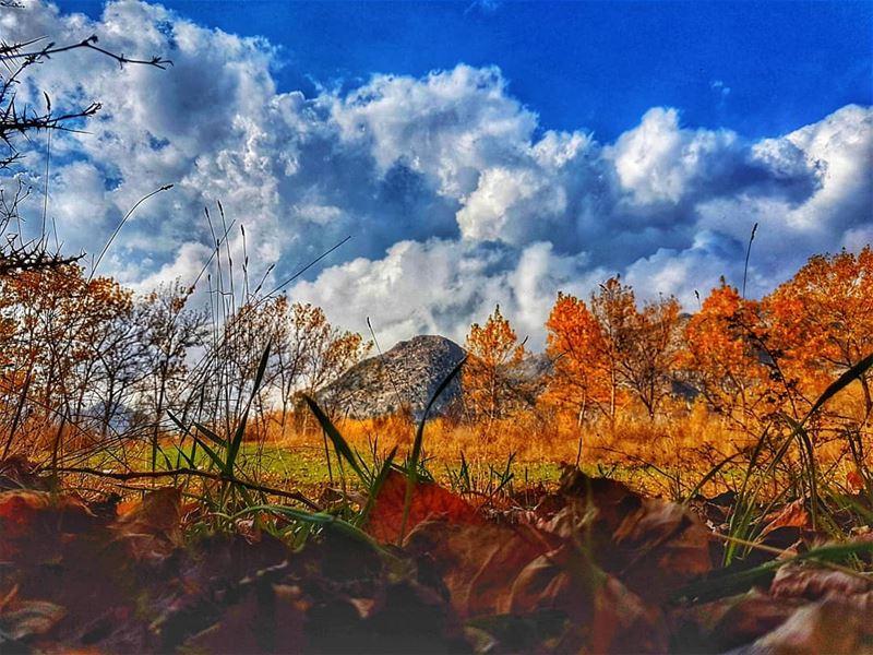 Last days of autumn autum fall beautiful colors livelovebeirut ... (Jabal el Laqloûq)