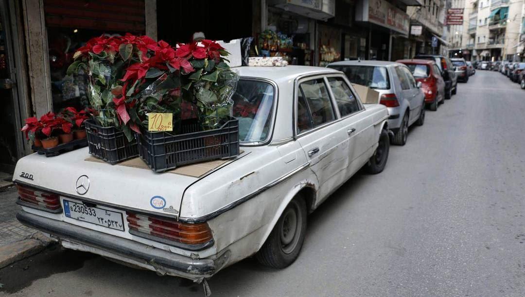 Hamra Florist... thisislebanon79 beartribeambassador beartribe ... (Hamra, Beyrouth, Lebanon)