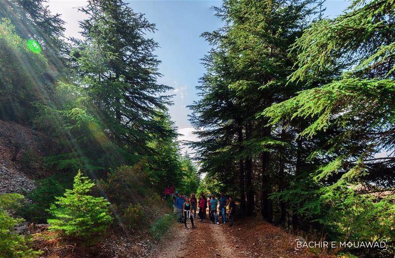 hike hiking with Hikerland @hikerland hikingadventures ceders of god...