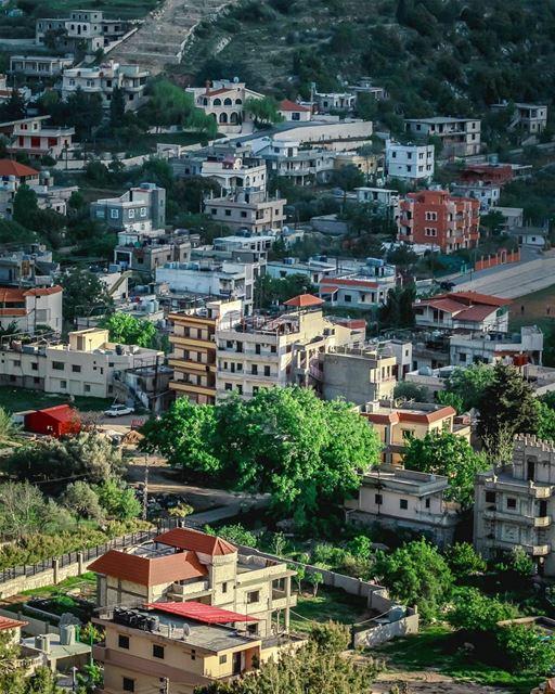 🏡🏡🏡🏡... (`Aramtá, Al Janub, Lebanon)