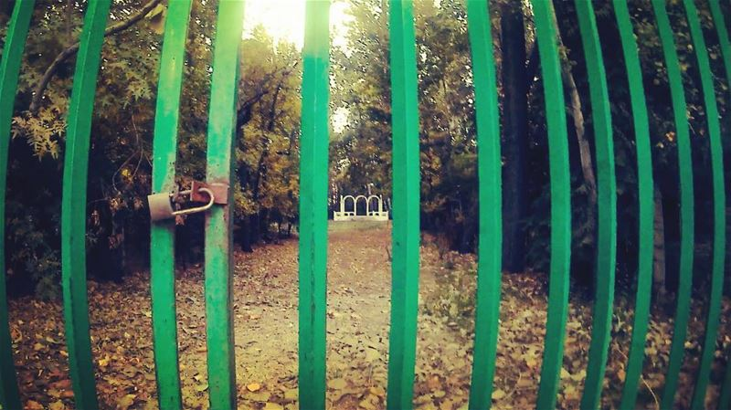 If the stable gate is 🔒, climb the fence. gopro goprophotography goprome...