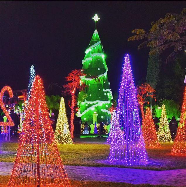 chekka lebanon north christmastree christmaslights christmas ... (Chekka Aatîqa, Liban-Nord, Lebanon)