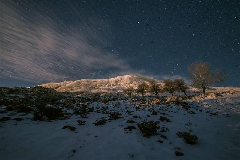 🌌❄..... stars stargazing clouds trees snow winter landscape... (Qanat Bakish, Mont-Liban, Lebanon)