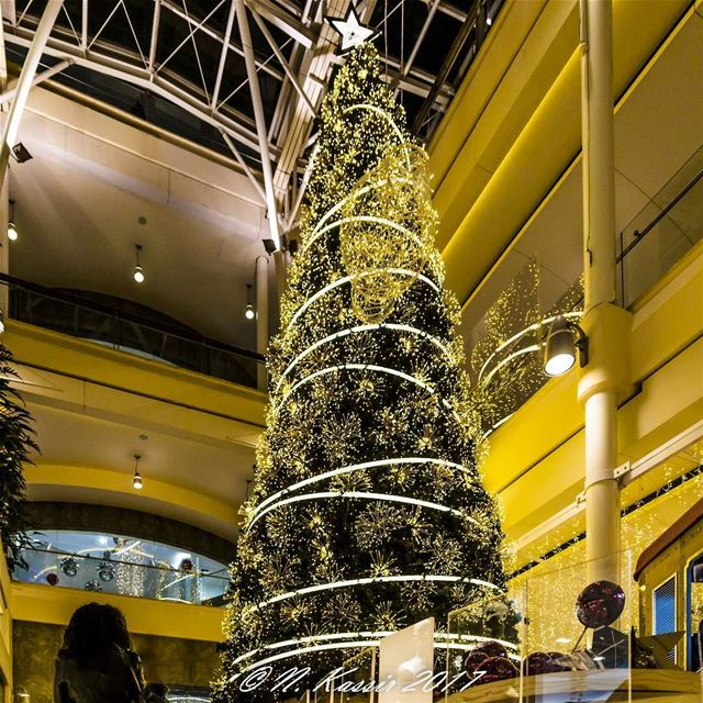 Christmas tree Beirut Lebanon ig_great_shots_me bd_shotz ... (MallSquare ABC)