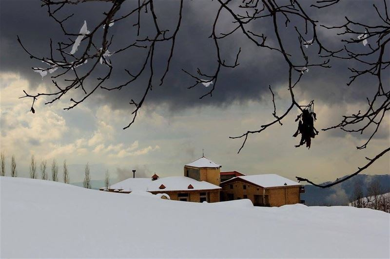 nature snow lebanon baskinta nature_perfection natureshots naturelover...