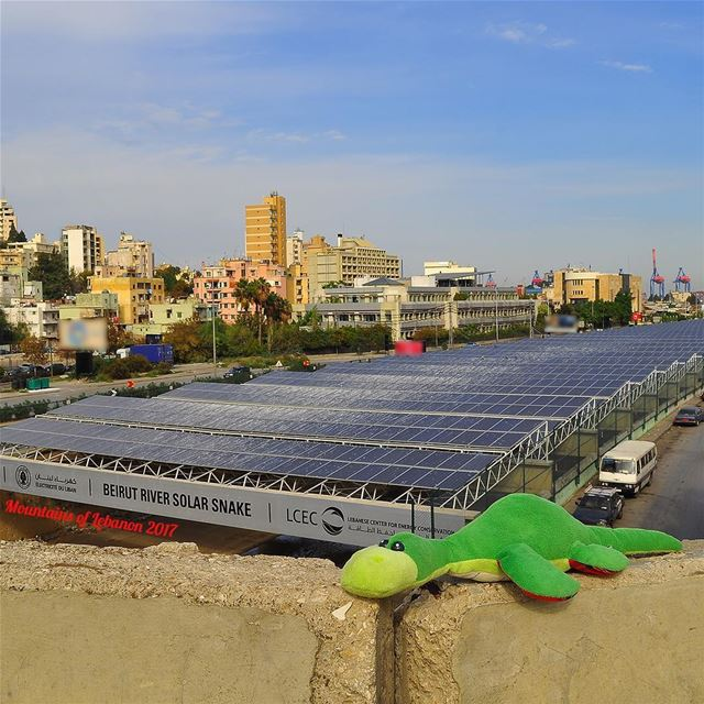 Ness was excited to see the Beirut River Solar Snake!An Ambitious project... (Beirut, Lebanon)