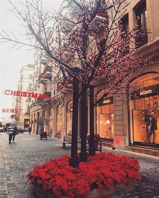 Not paris it's beirut christmastime glory lovebeirut alwaysbright ... (Beirut, Lebanon)