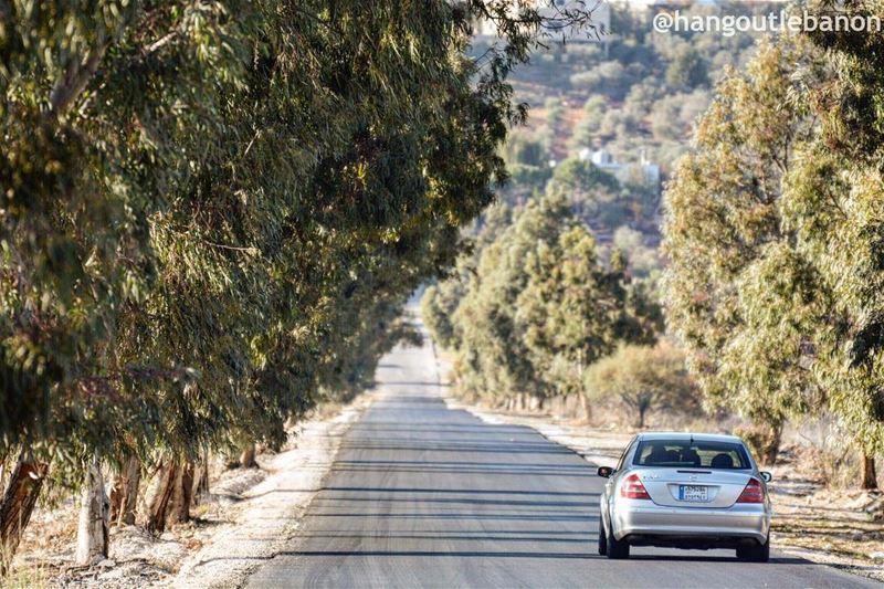 Good morning. Let's go for a ride.- hangoutlebanon lebanonpocketguide ... (Al Khiyam, Al Janub, Lebanon)