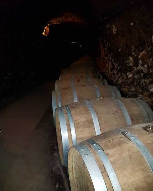 Cave de ksara . zahle zahleh cave ksara wine winetasting lebanon... (Zahlé District)