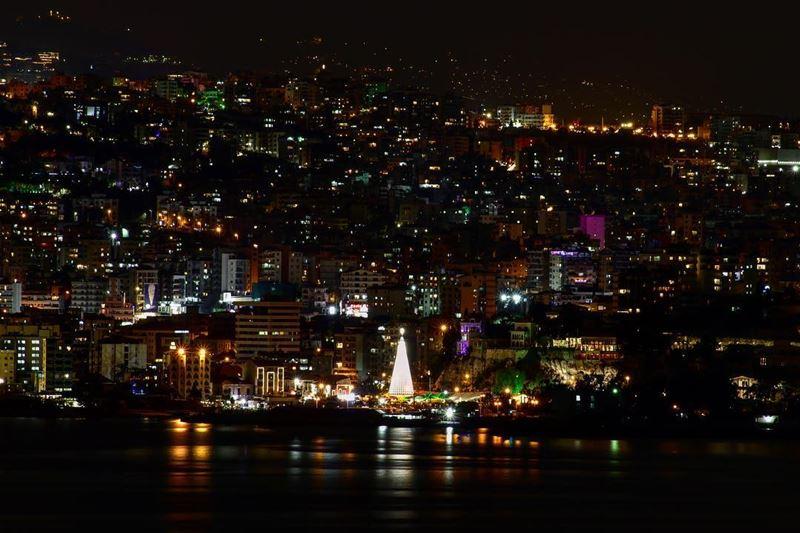 El arbolito más lejito. Lebanon Jounieh Liban Lebanese Travel ...