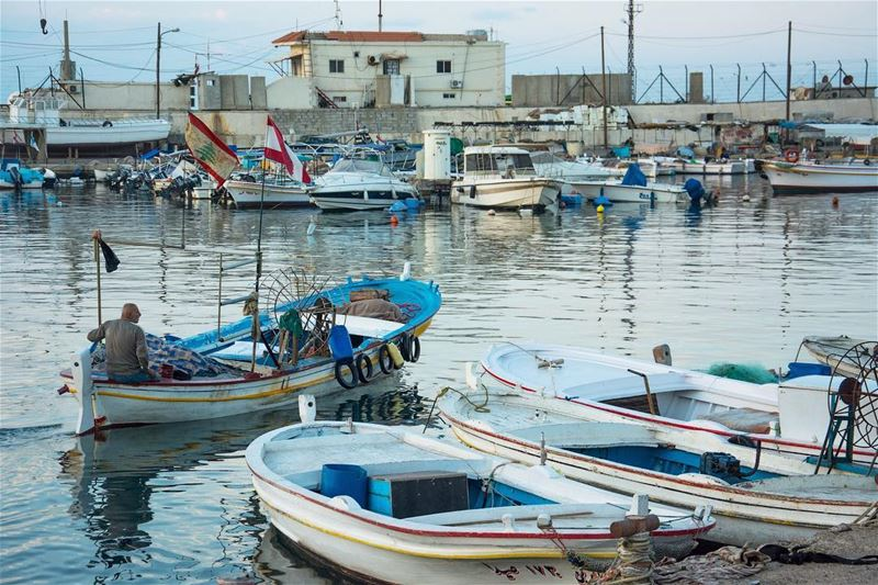 The departure... saida lebanon fisherman seaside fishing ...