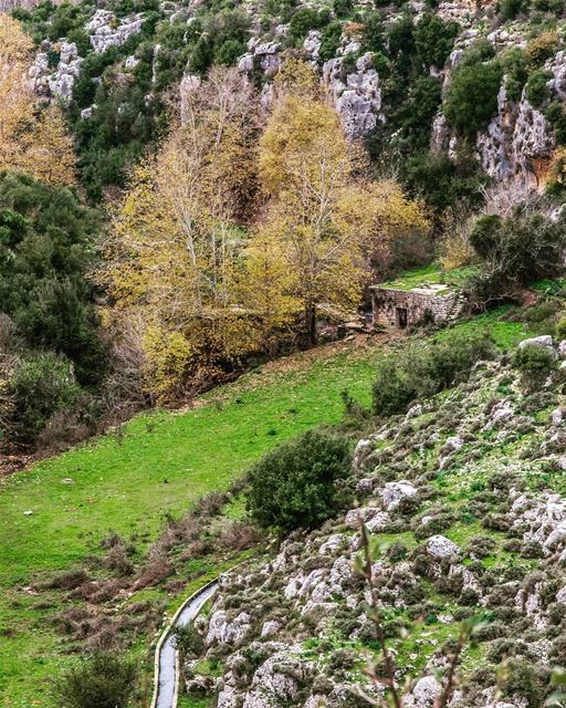 View from the topLocation : Nahr El Jawz, Lebanon earthpix ... (Nahr el Jaouz)
