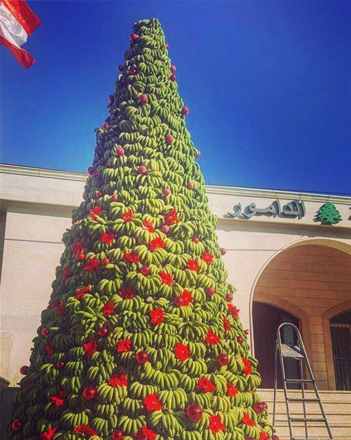 One of a kind Christmas Tree 🎄 Tropical 🌴Banana made Christmas tree🎄 @ (Damour, Lebanon)