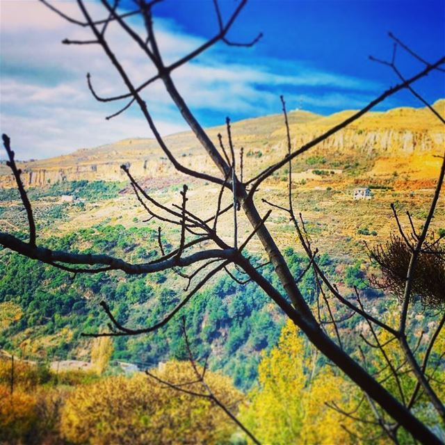 photography landscape nature fall endoffall leaves fallleaves ...