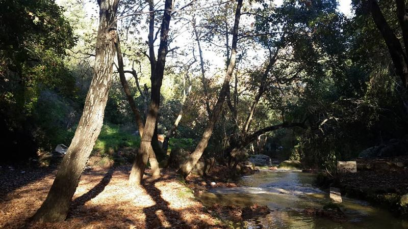 • lebanon nature lebanese adventure lifeofadventure discovery ...