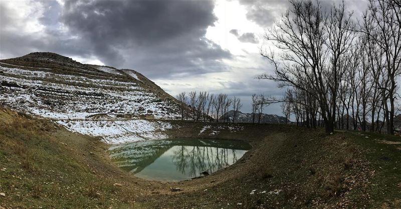 Our planet 🌲🍄❄️🏔 (El Laqloûq, Mont-Liban, Lebanon)