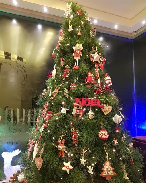 batroun christmas christmastime bebatrouni Lebanon northlebanon ... (Batroûn)