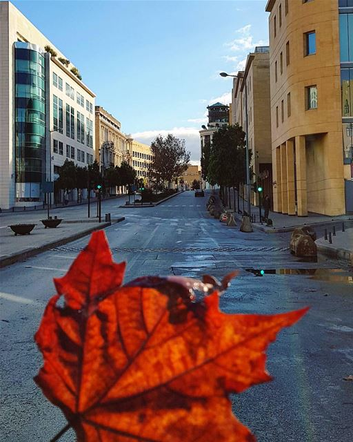 Life colours after the rain..🍁🌞🍁By @truewealth_manal_tamim ... (Downtown Beirut)