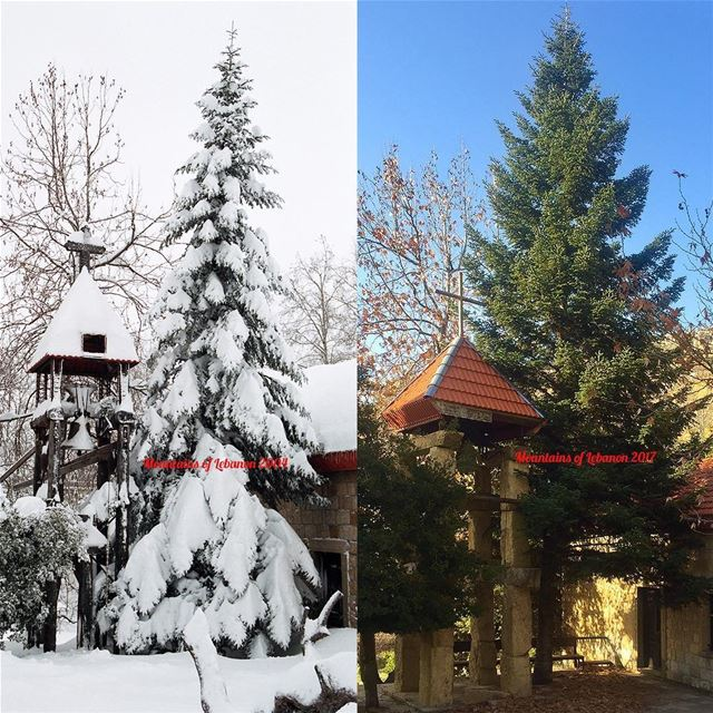 A blessed Christmas to all!This Christmas we share a comparative through-b (Faraya, Mont-Liban, Lebanon)