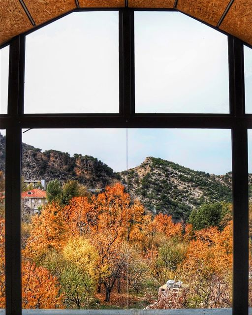 Wishing these colors would last forever 🍁🍃 (Mount Lebanon Governorate)