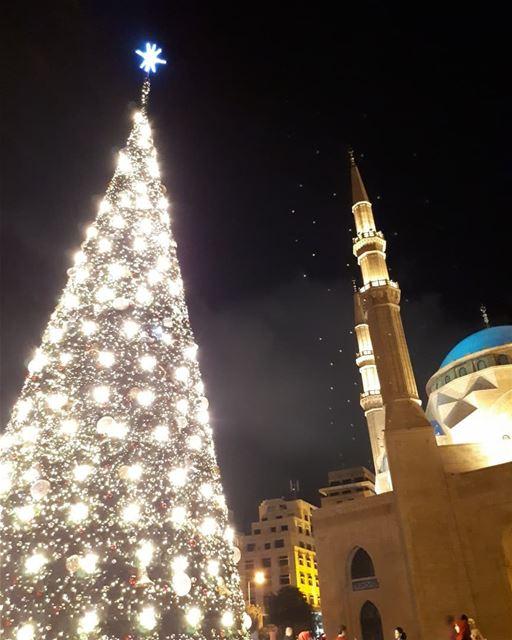 Christmas in Beirut💞 christmastree Christmas tree lights season ...
