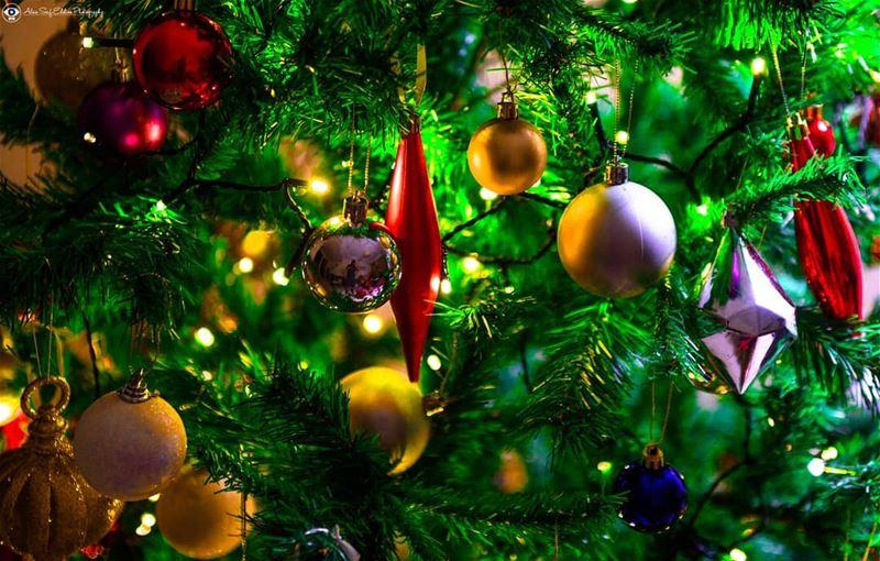 Merry Christmas everyone. xmas xmastree xmasindubai decoration ...