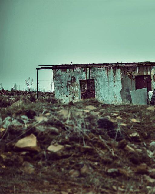 Imperfection is beautiful. 💚🎥 naturephotography abandoned explore ...