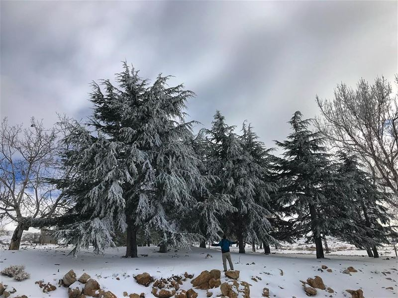 Let it snow.. let it snow.. let it snow 🎶🎵 (Faqra Kfardebian)