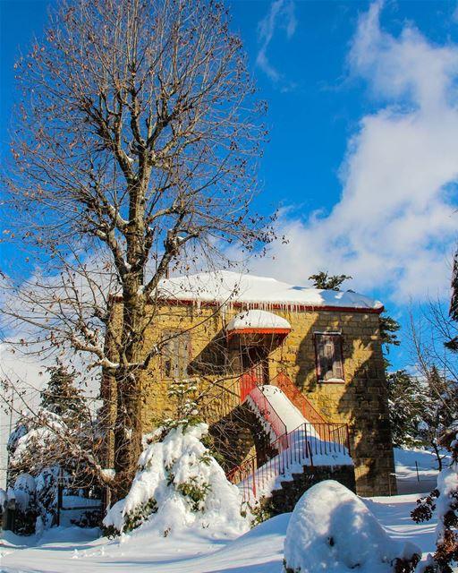Merry Christmas dears 🎄 (Sawfar, Mont-Liban, Lebanon)