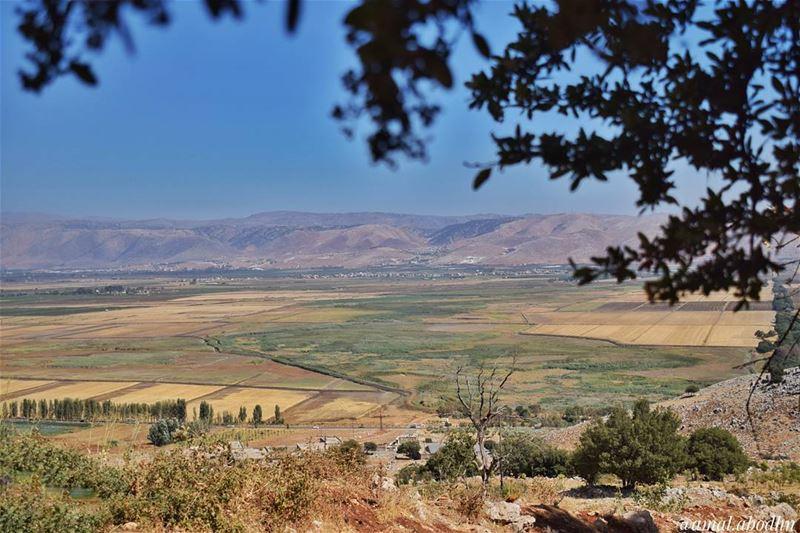 لا يهم الى اي مدى ستهرب،، فالمسافة وحدها لا تحل المشكلات 👌 lebanon ... (Beqaa Valley)
