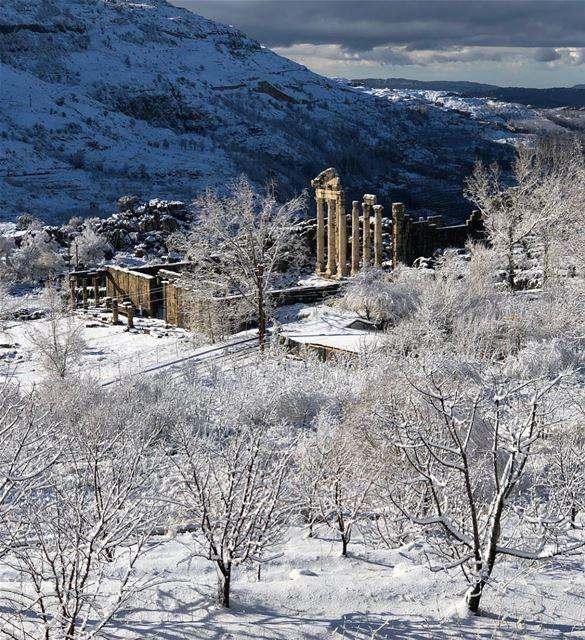 Good morning ❄️ lebanon winter snowymountains faraya faqra ...