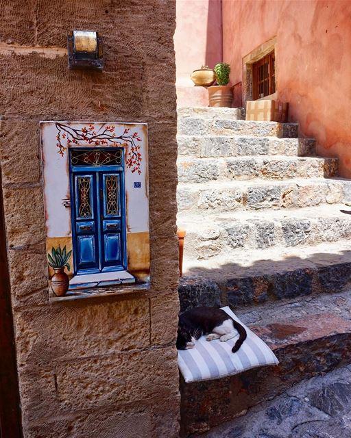 Current mood at work 😴 greecetagram greekcitytimes igers_greece ... (Monemvasía, Greece)