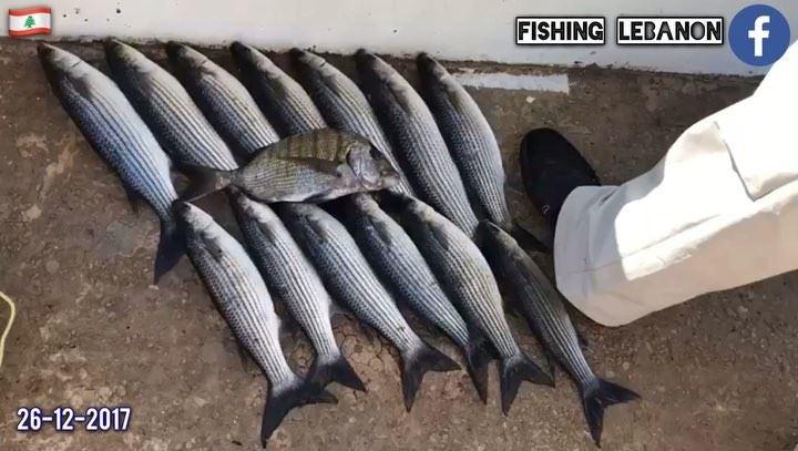 @fadimounla @fishinglebanon - @instagramfishing @sportingclubbeach @whatsup (Beirut, Lebanon)