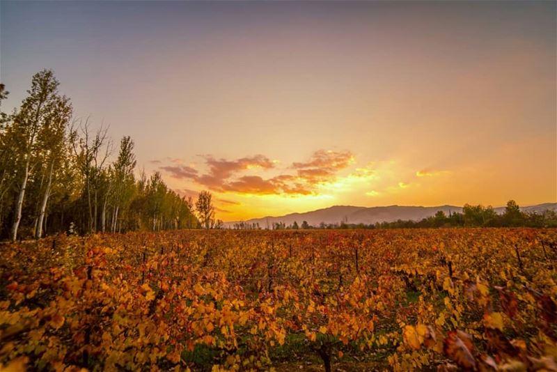 🌄🌄.... sunset sun clouds landscape landscapephotography... (Deïr Taanâyel, Béqaa, Lebanon)