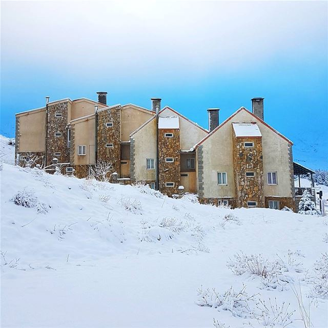 Choose your Chalet for new year🏠🏠🏠🏠 livelovebeirut wearelebanon ... (Cedars of God)