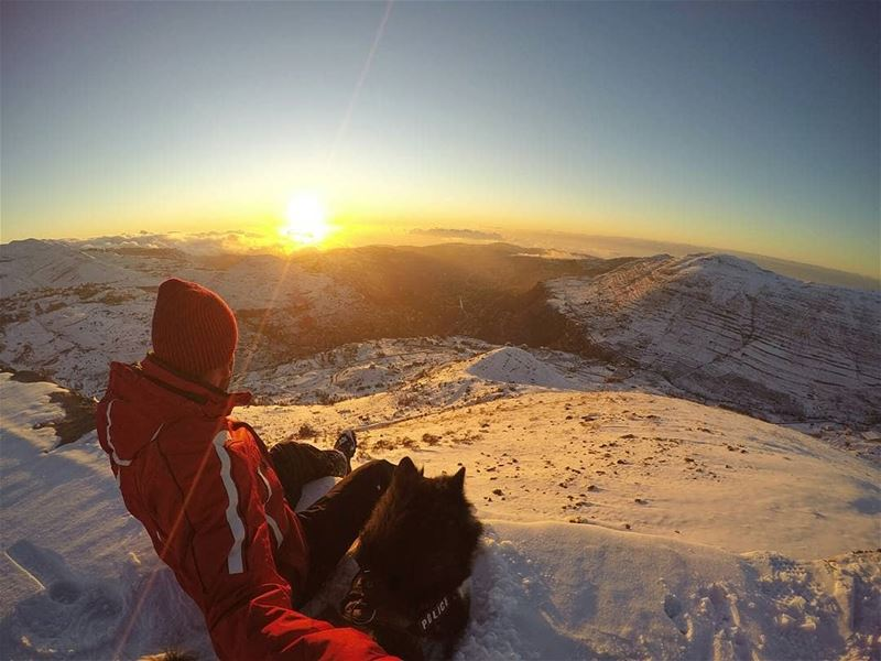 Sweet life: sunset, snow and a dog 🐕🗻❄📷 by @anthony.moussa------------ (Lebanon)