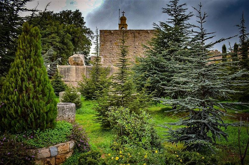Gives the ones you love Wings to fly, Roots to come back and Reasons to... (Beit Meri, Mont-Liban, Lebanon)
