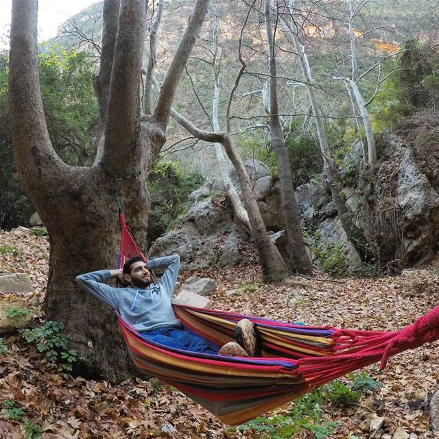 Happiness Is ... A Hammock 🌱 (Nahr el Jaouz)