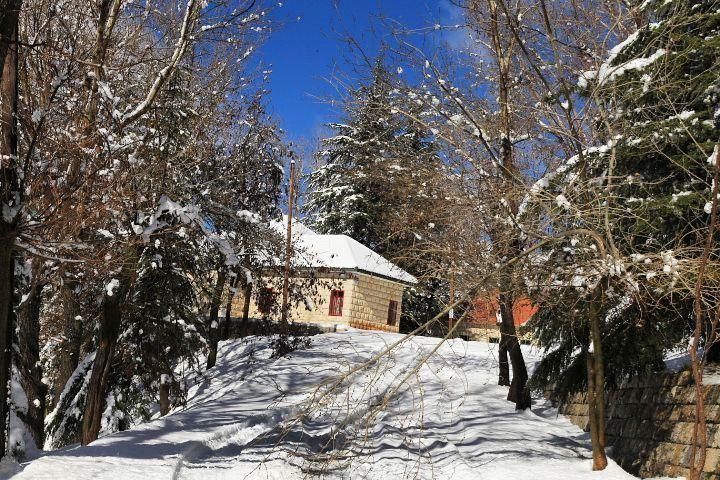 libano morning montain snow nature naturelovers trees cool igersbeirut... (El Laklouk, Mont-Liban, Lebanon)