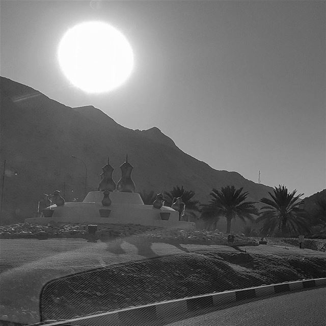 The sun does not shine for a few trees and flowers, but for the wide world' (Muscat, Oman)