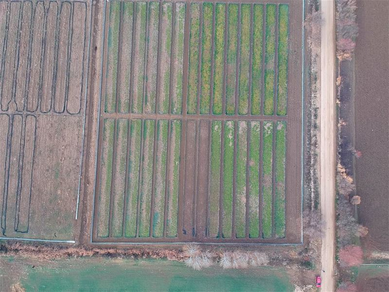 dronephotography dronstagram dronefly takenbywissamalhoury... (`Ammiq, Béqaa, Lebanon)