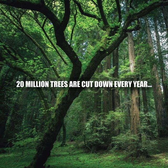 Millions of trees are cut down every year for the convenience of paper...