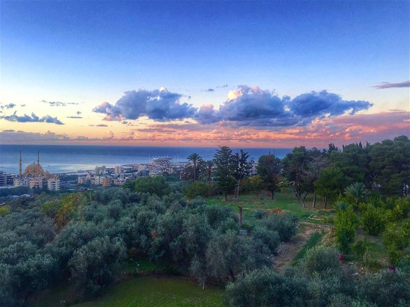 My view.💖 sunset view earth landscape clouds colors nature sea instapic... (Saïda, Al Janub, Lebanon)