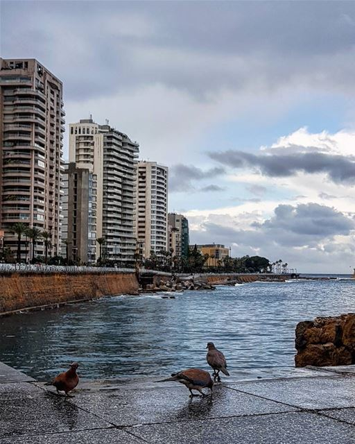Joy in Emptiness.... today  home corniche beirut.............. (Ain El Mreisse, Beyrouth, Lebanon)