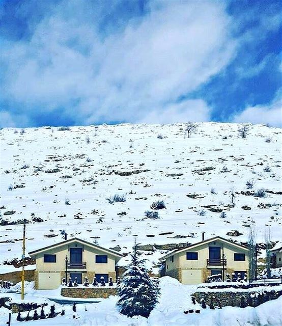 A snowball in the face is surely the perfect beginning to a lasting... (Faraya, Mont-Liban, Lebanon)