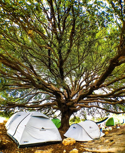 Not your average site camp with @decathlonleb.. lebanon beirut ... (Batroun District)