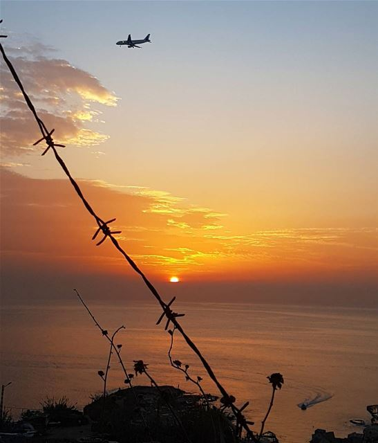 اتخطى حدود الواقعحدود الزمان واقطع السلك واقفز إلى الحرية ig_lebanon...